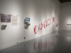 Canceled, Installation view at the Freedman Gallery, Albright College